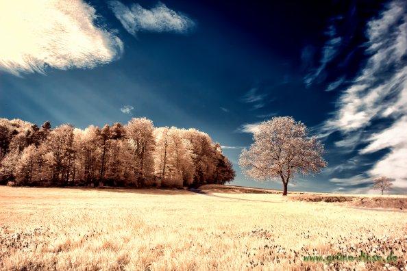 Landschaft - Infrarot