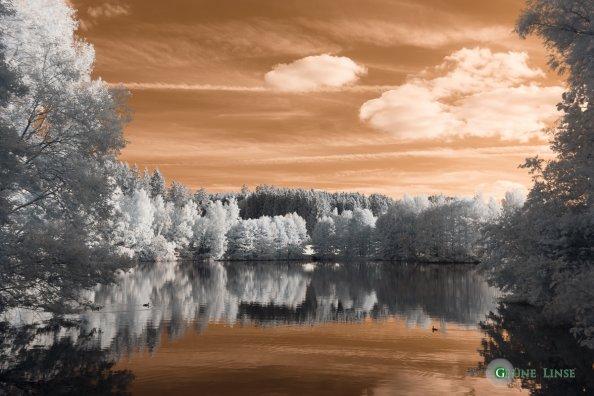 IR Foto - Weißabgleich